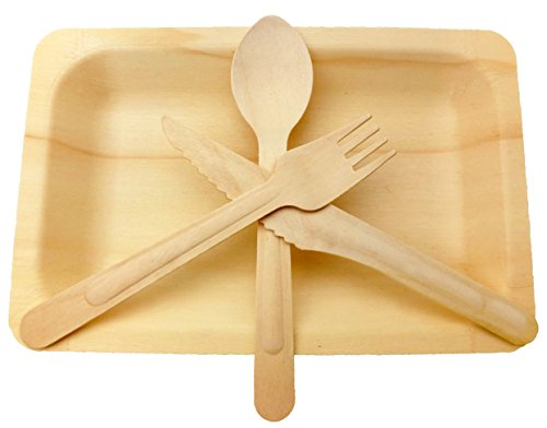 Wooden Disposable Cutlery Set of 10 Plate,10 Forks, 10 Spoons, 10 Knives, 6 inch Utensils,Biodegradable, Compostable Dinnerware,Wedding,BBQ, Catering & Party Supplies(Pack of 40)
