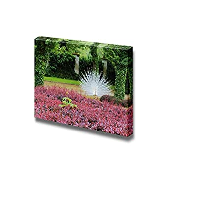 Dazzling Print, The White Peacock Spreads Its Tail in The Green Garden Wall Decor, That You Will Love