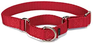 "PetSafe Martingale Collar 1"" Medium, Red"