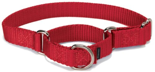 "PetSafe The Premier Collar Martingale Dog Collar, 3/4"" Mediu"