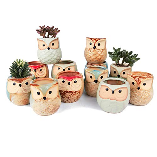 (T4U Ceramic Succulent Pots Mini Size Flowing Glazed Planter Set of 12, Cute Owl Bonsai Pots Home Office Decoration Desktop Windowsill Gift for Baby Shower Birthday)