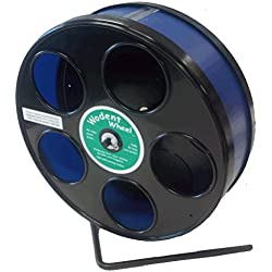 Wodent Wheel 8 Inch, Black with Blue Track