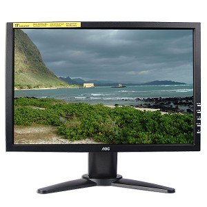 19-Inch AOC TFT LCD DVI/VGA Widescreen Monitor with Speakers (Black)
