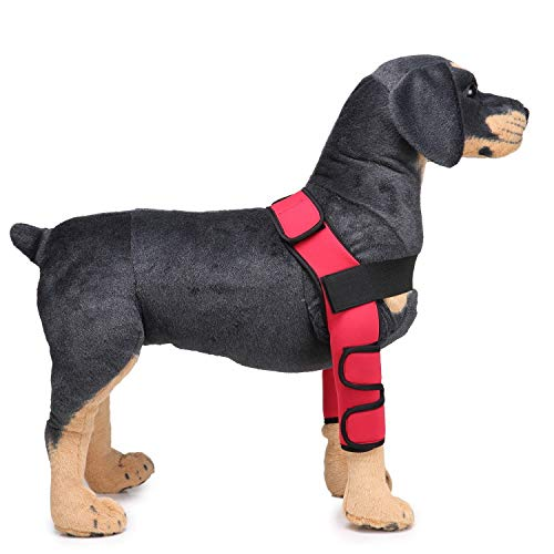 Red L Red L RUMOD Large Dog Canine Front Leg Brace with Hole, Hock Joint Wrap Canine Hind Hock Joint Sleeves Extra Supportive Dog Canine Rear Leg Hock Joint Wrap Predects