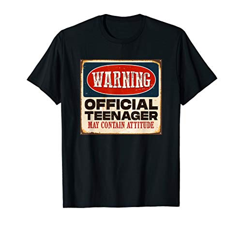 (Funny 13th Birthday T Shirt Official Teenager 13 Years Old)