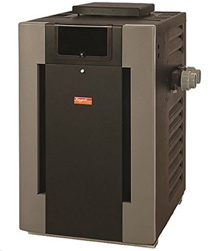 Raypak 014950 206000 BTU Digital Propane Gas Pool Heater with Cupro Nickel by Raypak