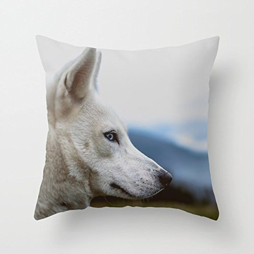 n Husky Peep At The Lens Pillow Cover Decorative Home Decor Nice Gift Square Indoor/Outdoor Pillowcase Size: 18x18 Inch(Two Sides) ()
