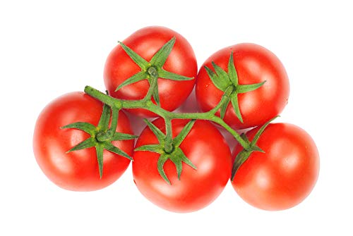 Bush Champion II Hybrid - Tomato Seeds