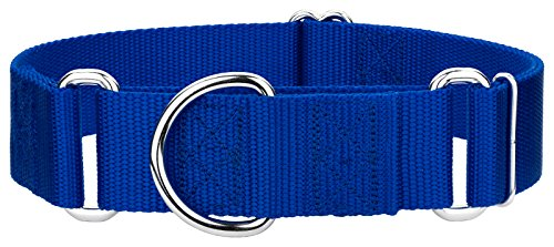 10 - Country Brook Design 1 1/2 Inch Martingale Heavyduty Nylon Dog Collars - Royal Blue - Large