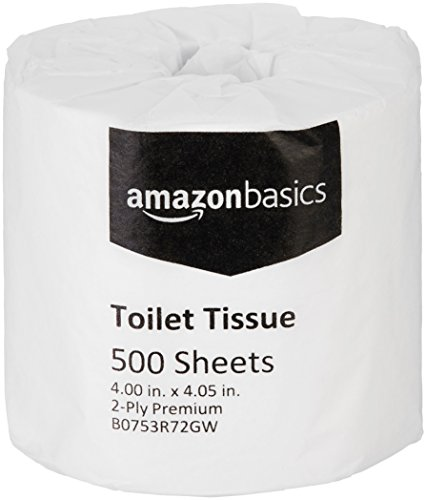 Basic Bathroom Tissue - AmazonBasics Professional Value Toilet Tissue for Businesses, 2-Ply, 500 Sheets per Roll, 80 Rolls