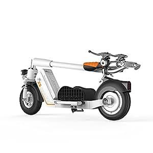 airwheel z5 foldable adult electric scooter. Black Bedroom Furniture Sets. Home Design Ideas