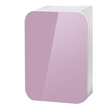 YIWANGO 10L De Coche Refrigerador Eficiente Y Silencioso Portátil ...