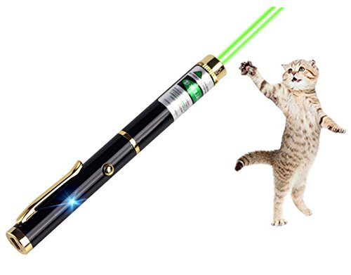 Single Point Laser pen pet cat toy wavelength 532nm, outdoor Tactics LED high power green light beam interactive training tools Led Laser Pointer