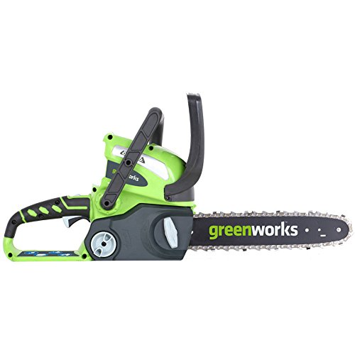 GreenWorks 2000219 40V 12'' Cordless Chainsaw, Includes Battery and Charger by Greenworks