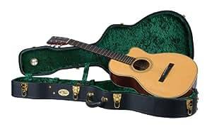 recording king cg 044k n vintage hardshell case deep small body guitar musical. Black Bedroom Furniture Sets. Home Design Ideas