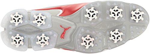 Titantour Red Risk PUMA high Violet Ignite Puma gray Shoes White Mens Golf Disc Rwqw6C5