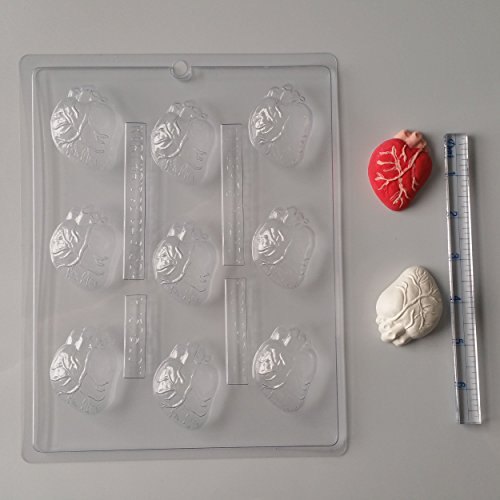 (Bite Size Human Heart Candy Molds H157 Halloween Chocolate Candy)