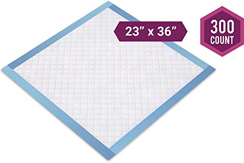 (Healthy Spirit Disposable Underpad, 23 X 36 inch, 300 Count)
