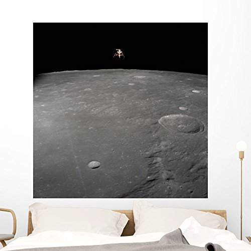 Apollo 12 Lunar Module Wall Mural by Wallmonkeys Peel and Stick Outer Space Graphic (48 in H x 48 in W) WM151572