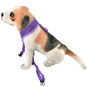 WZC Ajustar la correa de mascotas, con el arnés de cables del clip ...
