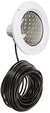 Hayward SP0570N100 100-watt Duralite Series Replacement Low voltage Light with 100-Feet Cord - 100w 100' Cord
