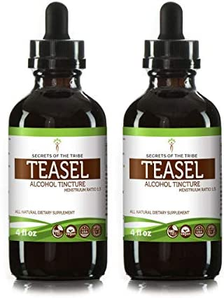 Teasel Alcohol Liquid Extract, Organic Teasel Dipsacus fullonum, Dipsacus sylvestris Dried Root Tincture Supplement 2×4 FL OZ