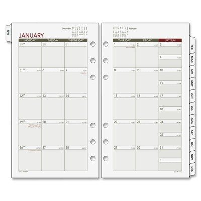 Day Runner Agenda (Day Runner Express Recycled Monthly Planning Pages,  3 3/4 x 6 3/4 Inches, White and Cream, 2011 (063-685Y))