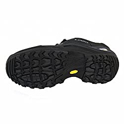 Lowa Men's Renegade II GTX LO Hiking Shoe