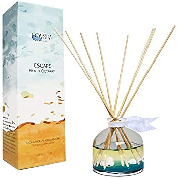 LOVSPA Escape Beach Getaway Ocean Scented Reed Diffuser Oil Set | Fresh Citrus Marine Scent & Woodsy Amber | Made with Real Sea Shells! Beach House Decor | Great Idea!