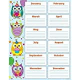 owl birthday chart for classroom - * COLORFUL OWLS BIRTHDAY CHART