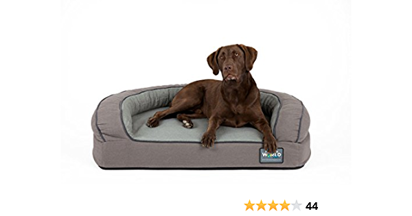 Better World Pets Super Comfort Bolster Dog Bed New Cover Waterproof Orthopedic Memory Foam Durable Canvas Extra Plush Foam Bolsters 5 Thick Washable Medium 25 60 Lbs Wolf Grey Pet Supplies Amazon Com