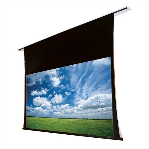 Targa Motorized Projection Screen (Targa Matte White Electric Projection Screen With Low Voltage Controller Viewing Area: 161