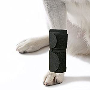 Agon Dog Canine Front Leg Brace Paw Compression Wraps with Protects Wounds Brace Heals and Prevents Injuries and Sprains Helps with Loss of Stability Caused by Arthritis 94