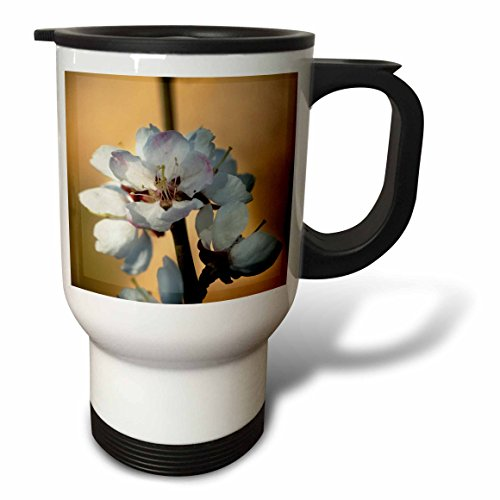 3dRose Alexis Photography - Flowers Sakura Beautiful - Closeup view of Japanese apricot flowers against the brown background - 14oz Stainless Steel Travel Mug (tm_286679_1) by 3dRose