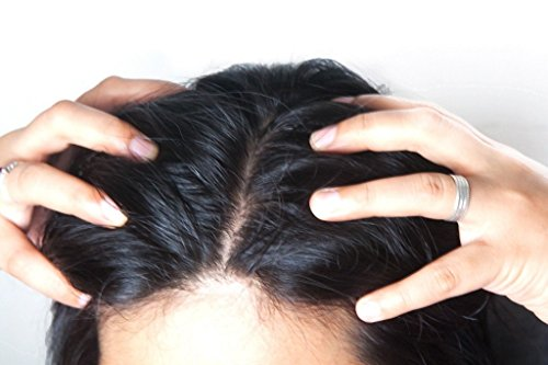 Brahmi Hair Oil (8 oz) by Vadik Herbs | All natural herbal hair oil for hair growth, hair conditioning, dandruff and dry scalp | Herbal scalp treatment by Vadik Herbs (Image #4)