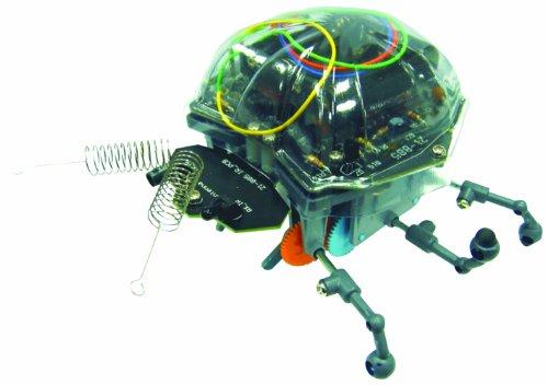 Ladybug Robot - 1