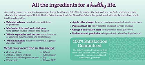 Image of Health Extension Grain Free Salmon Recipe, 1-Pound