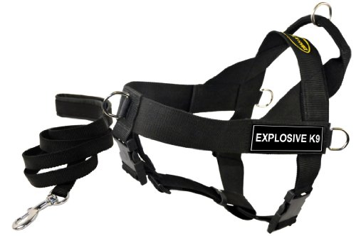 Dean and Tyler Bundle One DT Universal Harness, Explosive K9, Medium (26'' - 32'') Plus One Matching Padded Puppy Leash, 6-Feet Stainless Snap, Black by Dean & Tyler