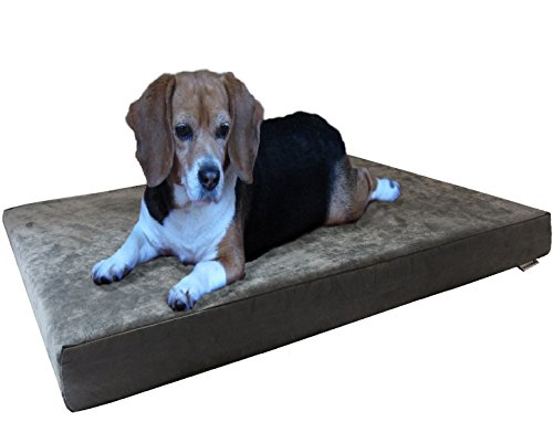 Dogbed4less Medium Large Orthopedic Gel Cooling Memory Foam Dog Bed, Gray Suede Cover with Waterproof Liner and Extra Bonus Pet Bed Case, 37X27X4 Inches