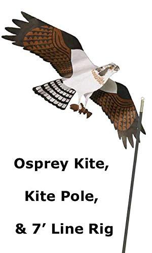 BestNest Jackite Osprey Kite & Fiberglass Telescoping Pole