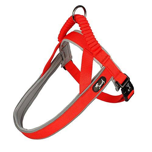 (Pettom Dog Halter Reflective Step-in Harness Heavy Duty Adjustable Padded Safety Nylon Puppy Pet Outdoor Walking Training Vest (S(Chest Size:16.5