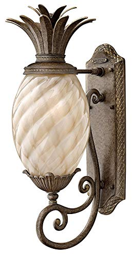 Hinkley 2120PZ Leaf, Flower, Fruit One Light Wall Mount from Plantation collection in Bronze/Darkfinish, ()