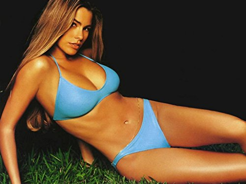 Sofia Vergara sexy hot posing in bikini 8 inch x 10 inch PHOTOGRAPH