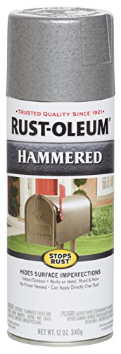 Rust-Oleum 7213830 Spray Paint, Each, Silver