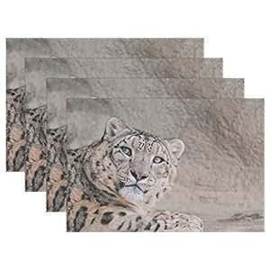 Amazon.com: Plate Pad Snow Leopard Face Handsome Kind