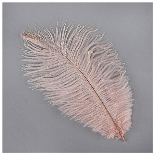 - Zucker Feather (TM) - Ostrich Feathers-Drabs Selected - Champagne