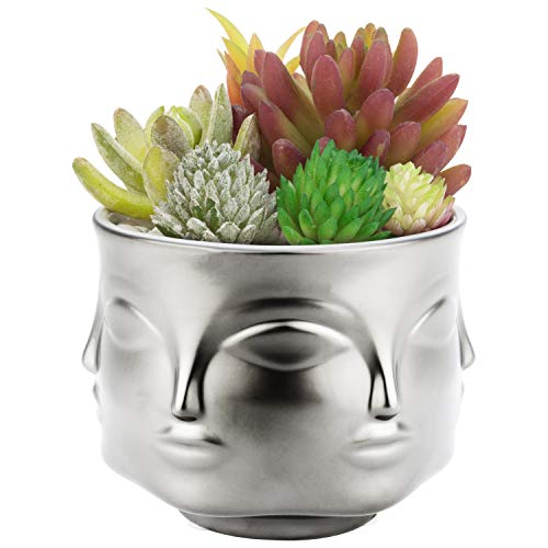 MyGift 4-Inch Silver Ceramic Guanyin Multi-Face Succulent Planter Vase