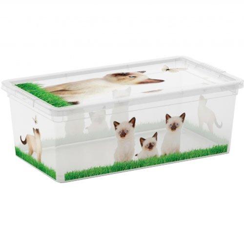 KIS 8407000 C-Box Style XS Corpo e Coperchio con Film Decorativo, 33.5 X 19 X 12 H, Puppy & Kitten Keter Amazon IT 8407000 2052 01