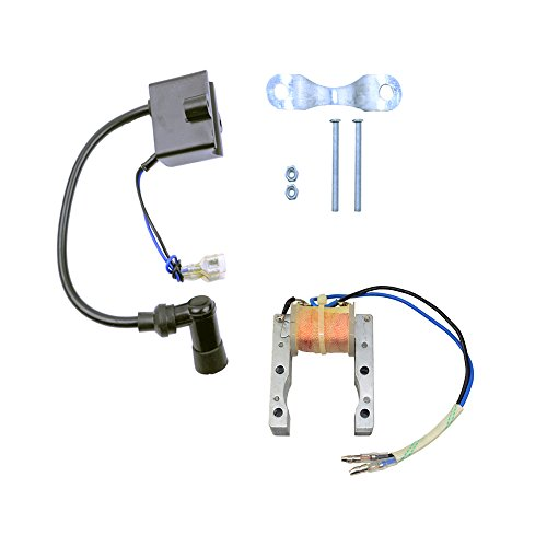 FLYPIG CDI Ignition Coil + Magneto Coil for 49cc 50cc 60cc 80cc 2-Stroke Engines Motor Motorized Bicycle Bike