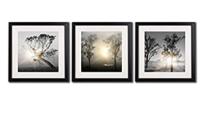 Black And White Wall Art Painting For Living Room Decor Tree At Sunrise Giclee Prints Landscape Canvas Print Posters 4 Piece Black Frames Nature Photos White Matte Artwork Pictures Printed On Canvas